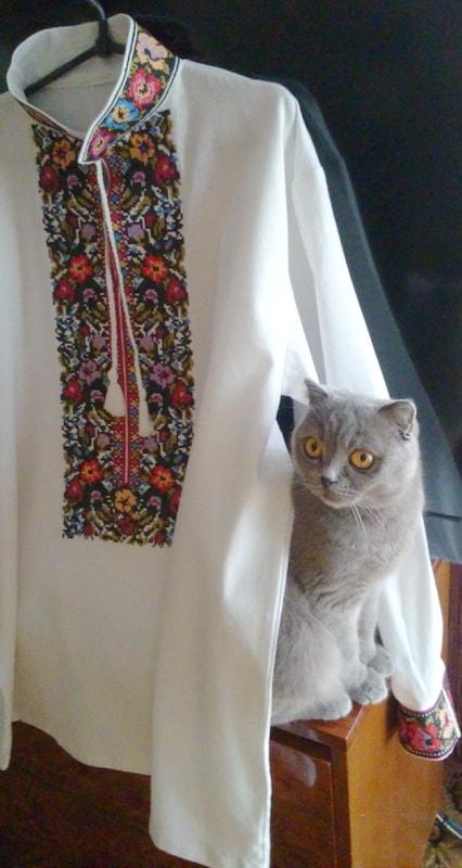 Сорочка мужская изысканная (Борщивська)